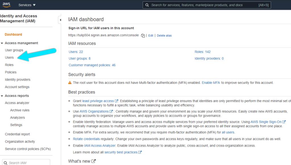 IAM Users menu on the left sidebar